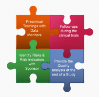 Integrated Risk Based Monitoring for Clinical Trials